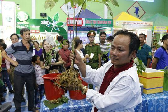 Sâm Ngọc Linh bán hơn 100 triệu đồng/kg